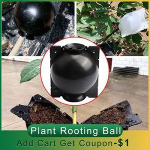5pcs/10pcs Plant Rooting Ball Garden Plant Root Growing Box Grafting Rooting Growing Box Breeding Case